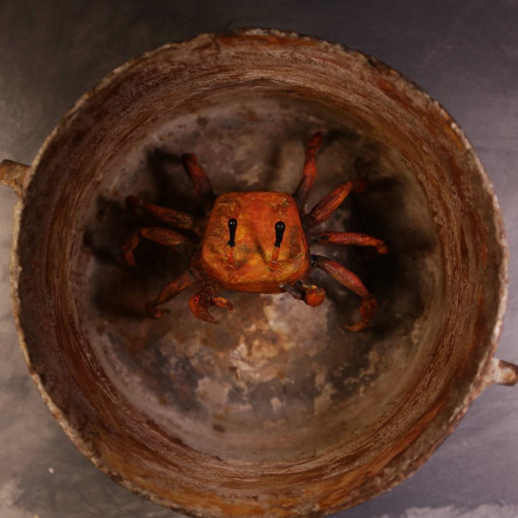 crab-1536x1024
